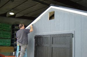 Shed Painter Deluxe