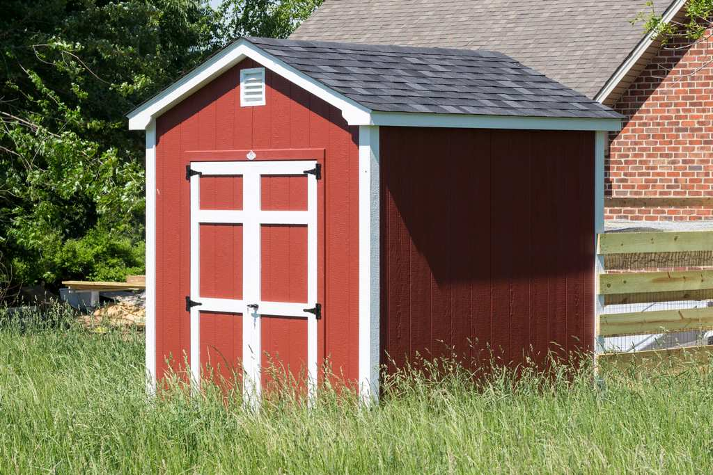 Mold,shed,