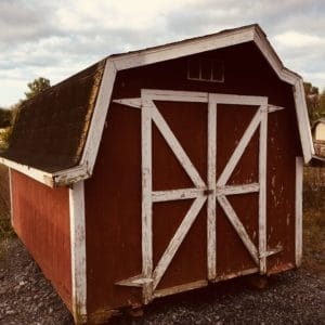 buying a used shed